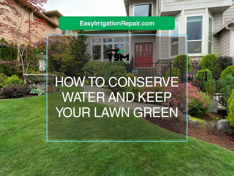 How to conserve water and keep your lawn green